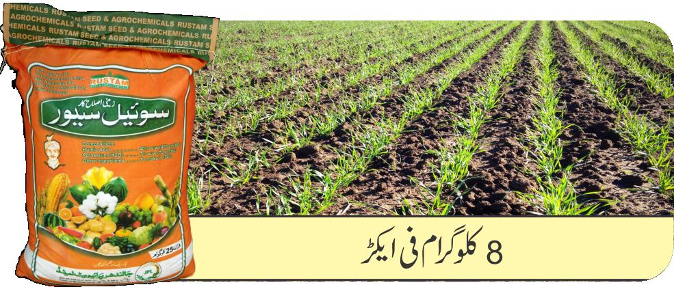 Wheat Soil Saver