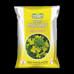 Hybrid Mustard