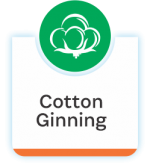 Deals in Cotton