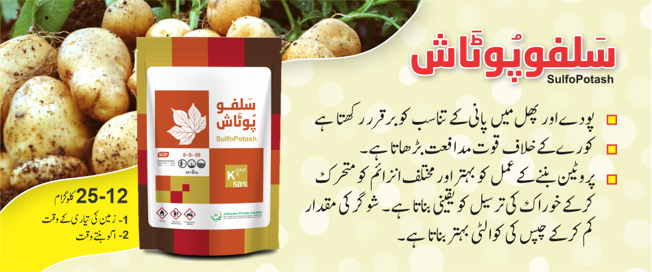 Sulfo Potash - Potato